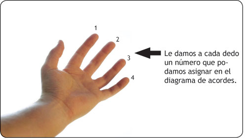 Imagen de dedos