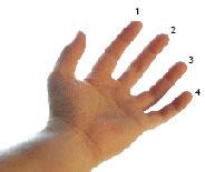 Imagen dedos y mano